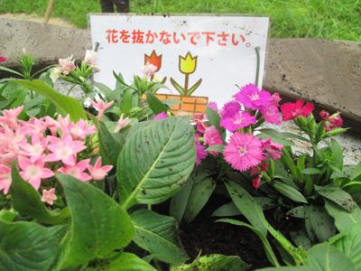 竹の塚地域交流会6